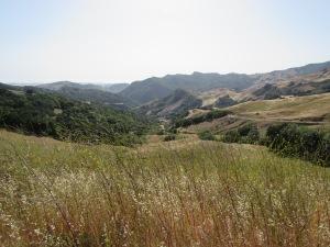Cambria California.
