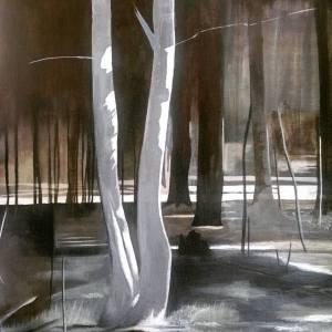 Aspen tree image 4